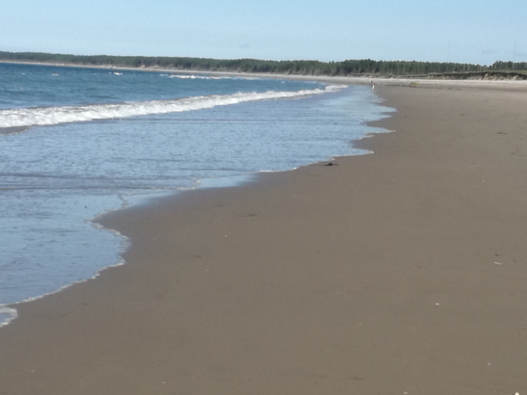 Findhorn Beach - uncrowded even in August